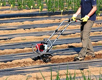 Motozappa per orto e giardino, realizzata per impiego generico in lavori interfilari.