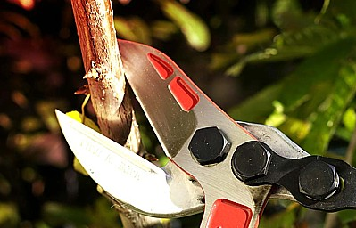 Tagliarami super professionale Falket, il migliore sul mercato, prodotto in Iatlia.