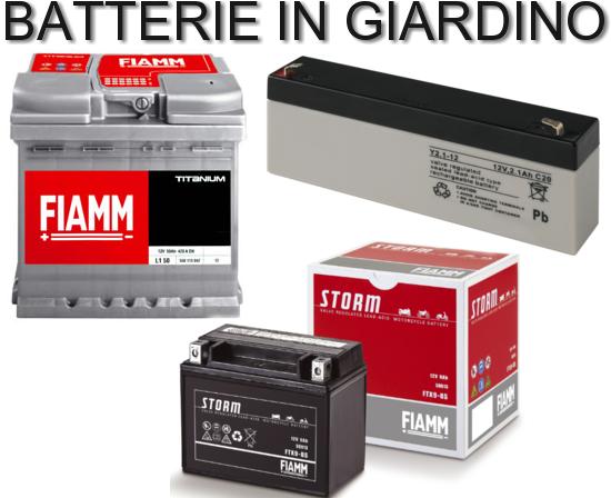 Come funzionano le batterie, come sono costruite, come lavorano e dove si usano, le trovaimo in giardino installate nei trattorini, nei rasaerba a batteria, negli utensili a mano, vi sveliamo tutto sulla loro mondo.