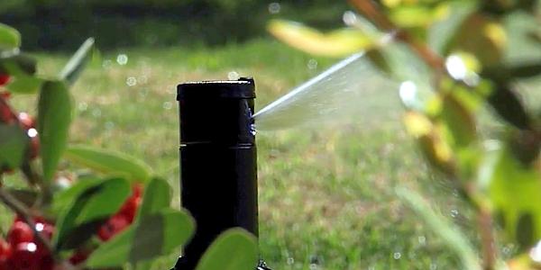 Irrigatori dinamici a scomparsa per giardini dalla ottima precipitazione e dalla facile installazione. Nella foto si nota la perfetta precipitazione ed erogazione dell'acqua.