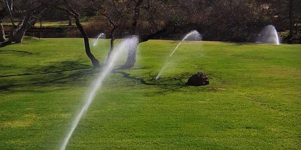 Irrigatori dinamici a scomparsa Rain, come lavorano sul prato di casa.