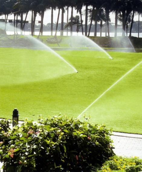 Progetto verde per organizzare lo spazio esterno for Progetto irrigazione