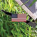Mulching di tipo Americano che polverizza l'erba durante il taglio.