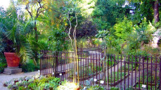 Motozappa piccola e compatta per orti, giardini, aiuole, lavori inerfilati, facile da usare.