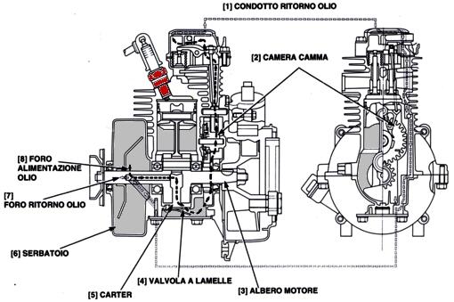 Schema Elettrico Idropulitrice Lavor : Schema motore idropulitrice fare di una mosca