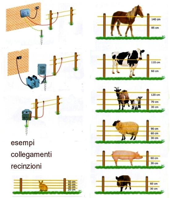 Filo elettrico per animali dispositivo arresto motori for Recinzione elettrica per cavalli