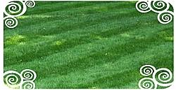 Tagliare il prato, creare un manto erboso perfetto grazie a macchine per il taglio dell'erba sia con lama rotativa che con rullo elicoidale.
